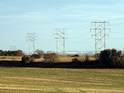 El Govern plantejarà un conflicte positiu de competències pel Reial decret de finançament de l'adaptació de línies elèctriques contra la col·lisió i electrocució d'ocells
