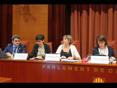 La consellera Alba Vergés durant la seva compareixença a la Comissió de Salut al Parlament.