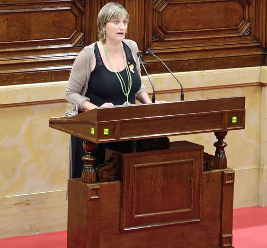 La consellera, aquest matí al Parlament. FOTO: Parlament de Catalunya