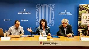 La consellera Teresa Jordà durant  la presentació de la jornada sobre els espais agraris