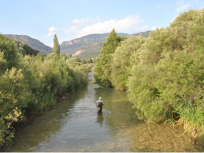 Pesca en aigües de Catalunya