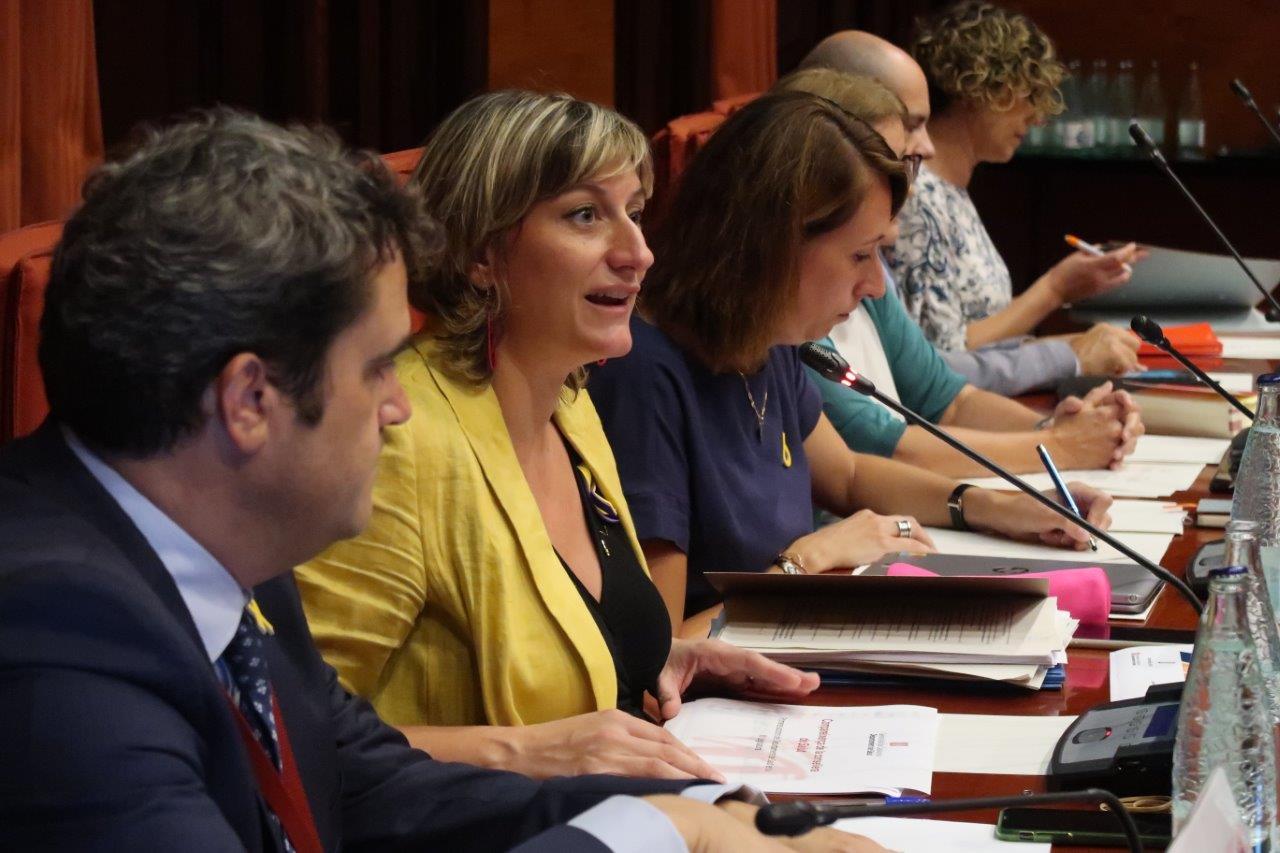 Un moment de l'exposició de la consellera al Parlament, avui. FOTO: Parlament de Catalunya