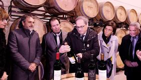 El president Torra, durant la visita al Celler Cooperativa Agrícola de Batea. Autor: Andreu Puig
