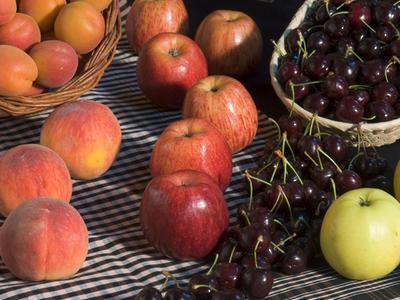 Venda de fruites