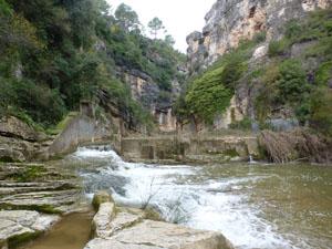 El riu Gaià a la zona de Querol, una de les actuacions candidates.