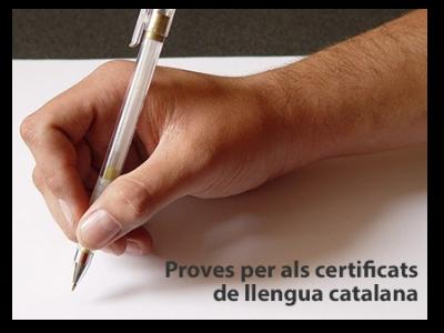 Certificats de llengua