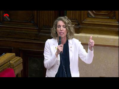 La consellera Àngels Chacón en la seva intervenció avui al Parlament