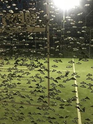 papallones atretes per la llum