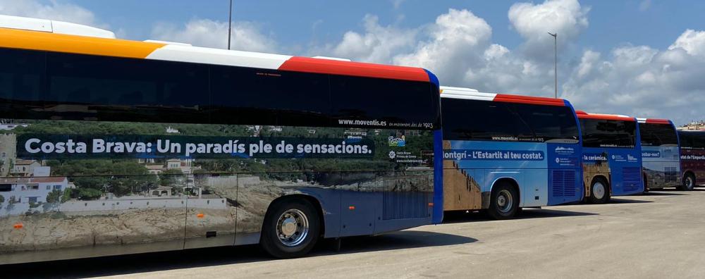 Flota d'autobusos amb les imatges de la campanya