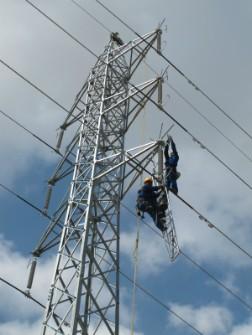 Línia elèctrica i operaris