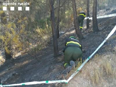 Agents Rurals treballant per identificar les causes d'un incendi