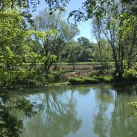 Entrada al braç secundari del riu Ter a l'illa de les Gambires.