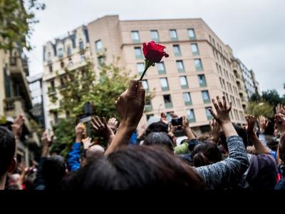 Imatge d'una mà que sosté una rosa sobresortint en una protesta.