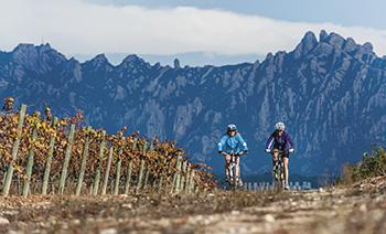 cicloturisme ciclobcn21 bicicleta mobilitat sostenible eurovelo