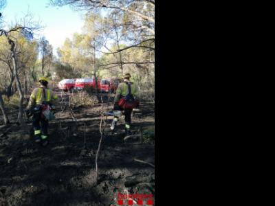 Incendi vegetació forestal Tortosa