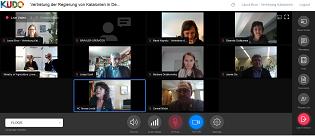 Foto web de la videoconferència.