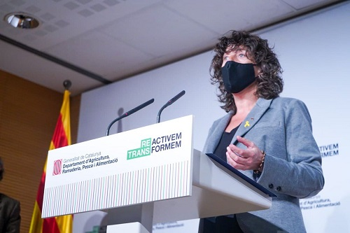 Teresa Jordà presetant les conclusions de l'estudi