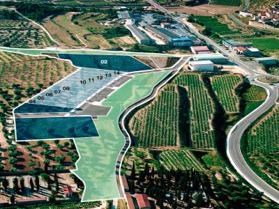 Sector d'activitats econòmiques Vall de Vinyes de Batea (Terra Alta).