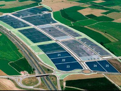 Sector Vinyes del Mig de Bell-lloc d'Urgell.