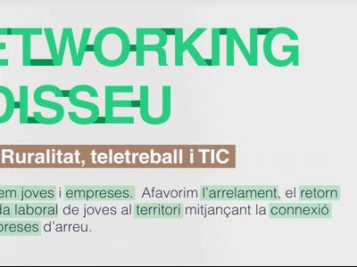 Miniatura Networking Odisseu