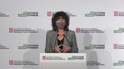 Teresa Jordà presentant el PEAC 2021-2026