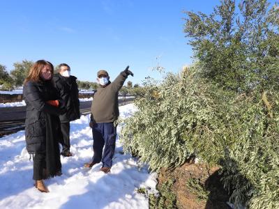 La consellera Budó ha visitat avui zones afectades pel temporal Filomena a les Garrigues