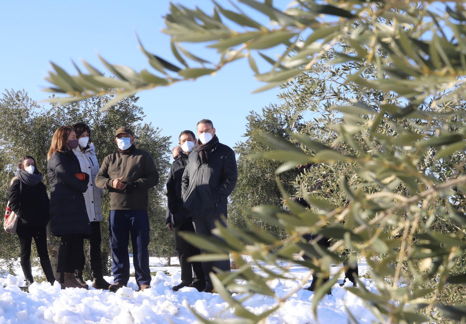 La consellera Budó ha visitat avui diverses zones afectades pel temporal Filomena a les Garrigues
