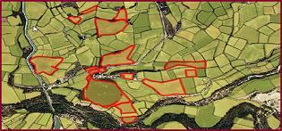 Foto web mapa explotacions