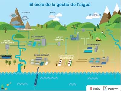 Infografia sobre com es gestiona el cicle de l'aigua.
