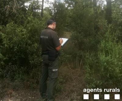 Agent Rural realitzant el seguiment de DeBosCat
