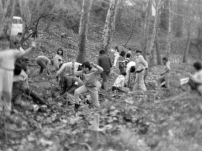 Festa de l'arbre a Olot, 1986.