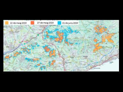 Mapa d'evolució de l'afectació de l'eruga peluda al Montnegre durant el 2020 representat sobre el Mapa topogràfic de Catalunya 1:50 000 de l'ICGC
