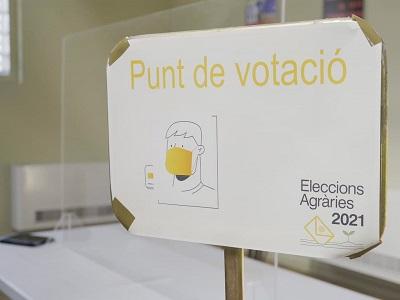L'horari de votació de les Eleccions Agràries s'allarga dues hores per garantir la participació de tots els electors