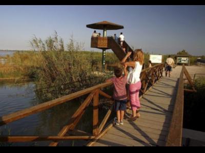 Dona i nen observant ocells al Parc natural del Delta de l'Ebre