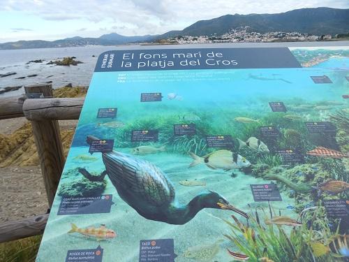 L'Aula Gastronòmica pensada per dinamitzar i difondre la cultura del peix i promoció de l'activitat turística de Roses ha estat una de les iniciatives distingides