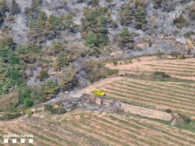 Imatge incendi forestal Conca de Barberà