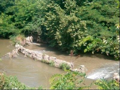 Resclosa del Salamí, en el riu Gurri.