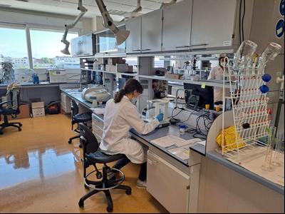 (Laboratori de Nanomol Technologies al Parc de Recerca de la UAB).