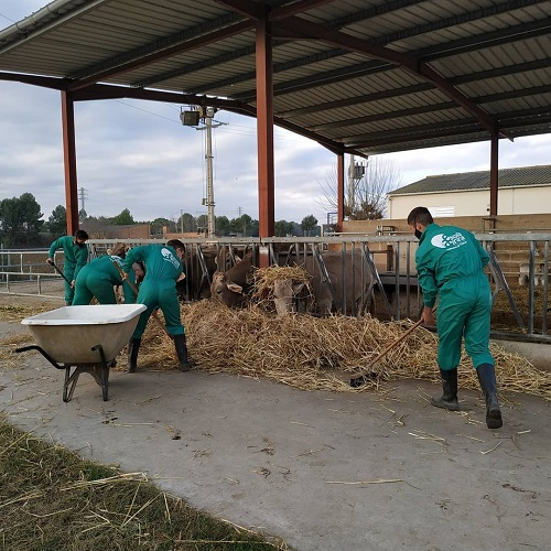 Joves formant-se a les Escoles Agràries