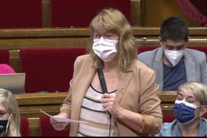 La Consellera de Cultura, Natàlia Garriga, en la seva primera compareixença al Parlament de Catalunya