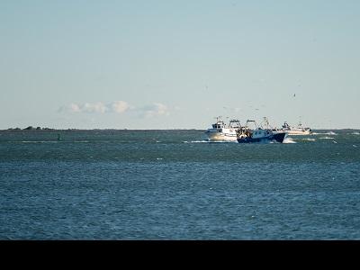 Embarcacions pesqueres