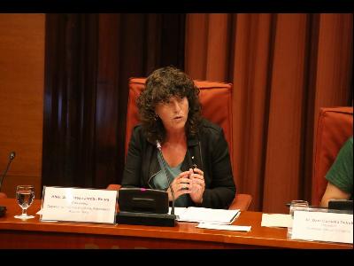 La consellera Jordà, durant la compareixença al Parlament