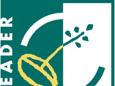 Miniatura foto-logo Leader Particpia