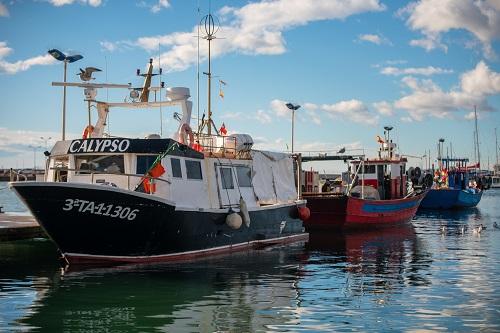 Vaixells de pesca