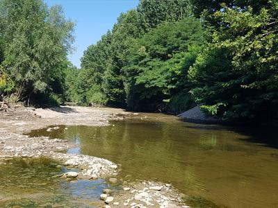 Entorn del riu Gurri després de la retirada de la resclosa.