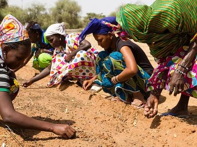 Unes dones manipulant la terra al Sahel.