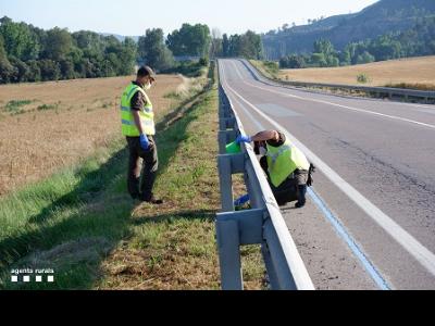 Recollida de burilles a la carretera d'Avinyó