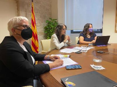 Reunió del Grup d'anàlisi dels feminicidis.